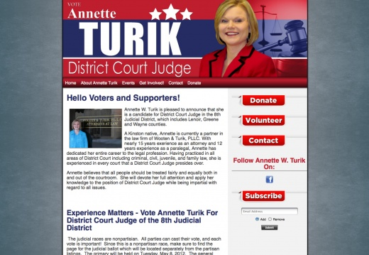 Annette Turik For District Court Judge of the 8th Judicial