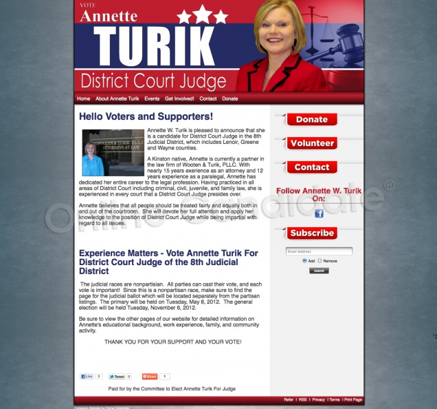 Annette Turik For District Court Judge of the 8th Judicial.jpg