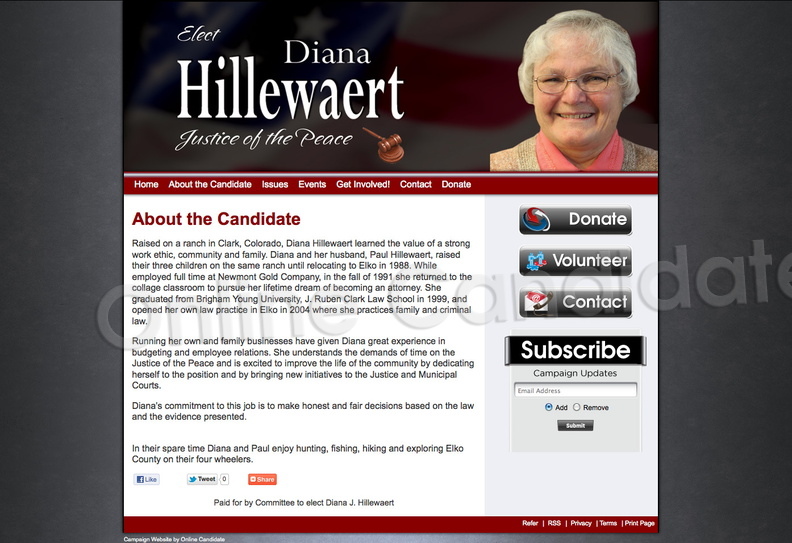 Diana J Hillewaert for Justice of the Peace.jpg