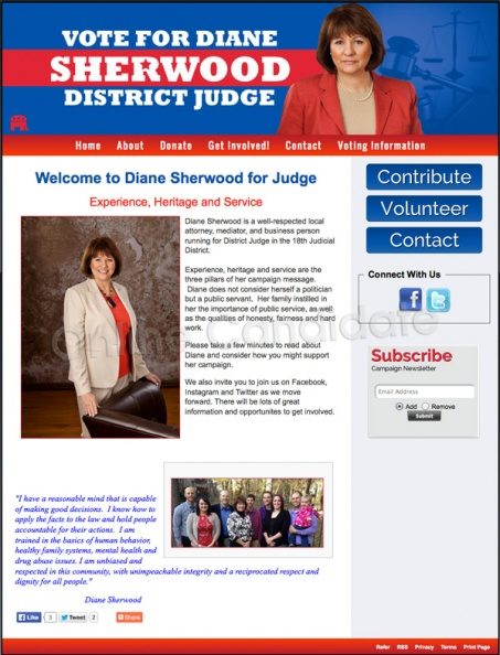 Diane Sherwood for Wichita, Kansas District Judge.jpg