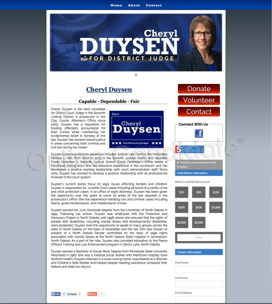 Cheryl Duysen for Judge.jpg