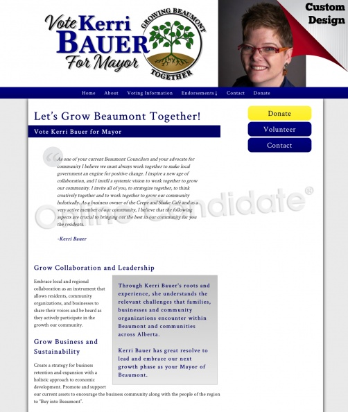 Kerri Bauer for Mayor.jpg