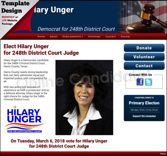 Hilary Unger Democrat for 248th District Court.jpg