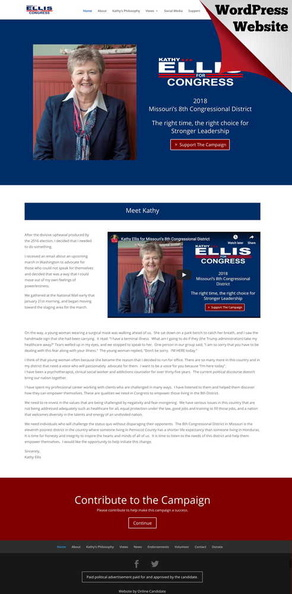 Kathy Ellis for Congress.jpg