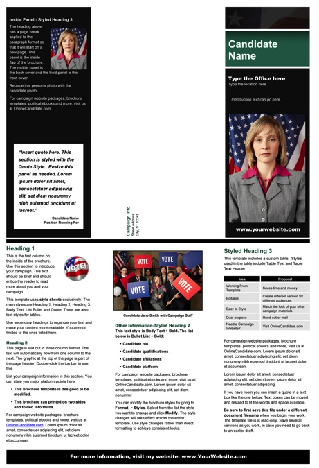 Political Brochure Templates - Black & Green Stripe with Flag Theme